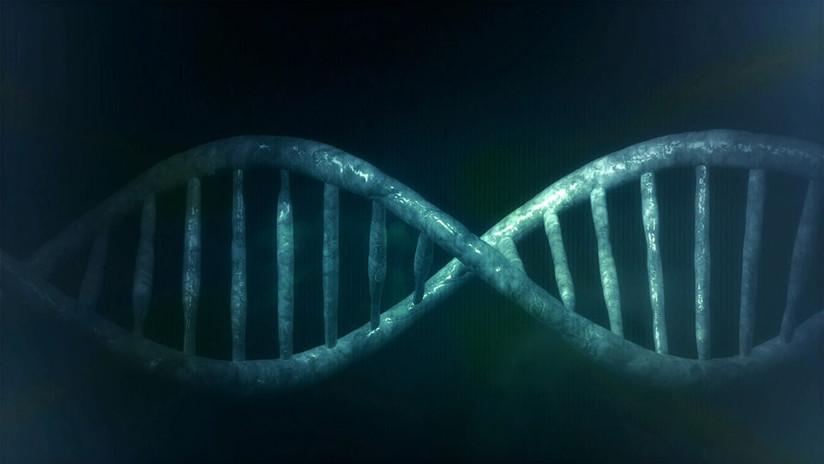 Los científicos crean el primer organismo vivo con el ADN completamente rediseñado