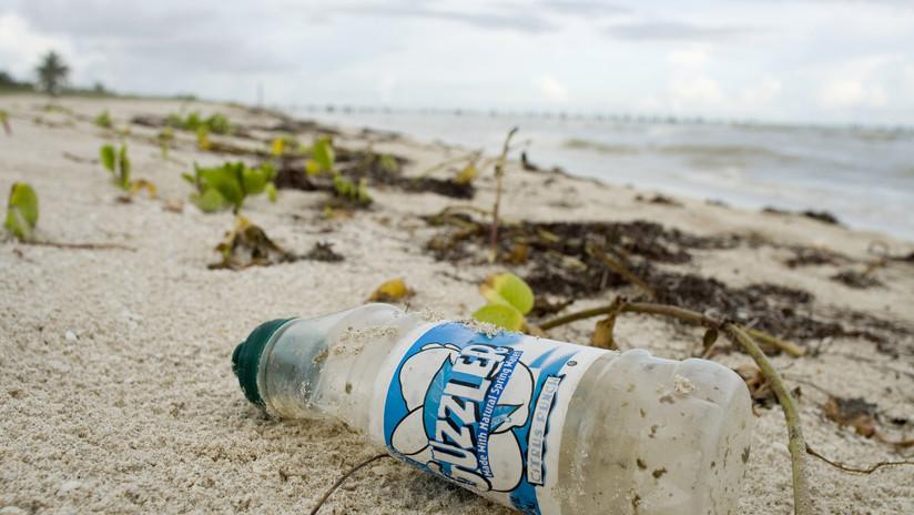 Paraíso perdido: Descubren más de 400 millones de fragmentos de basura en unas remotas islas tropicales