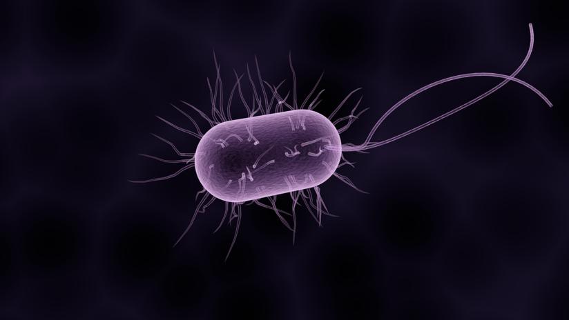 Qu�© es el microbioma y por qu�© abre la puerta a curar diversas enfermedades