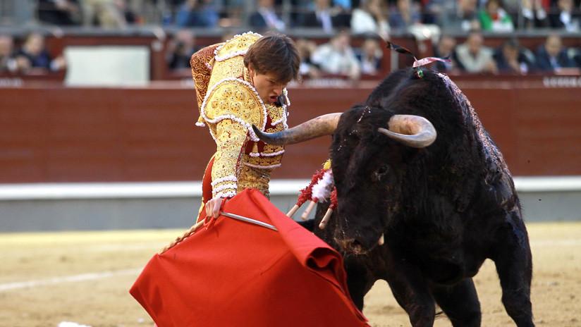 VIDEO: El escalofriante momento en que un torero francés recibe una cornada en el recto