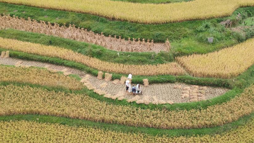 Se disparan las acciones de los productores de tierras raras tras las amenazas de China de restringir sus exportaciones