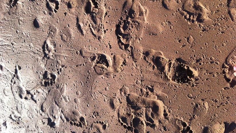 Huellas de 14.000 años en una cueva de Italia arrojan luz sobre la conducta social de los antiguos humanos