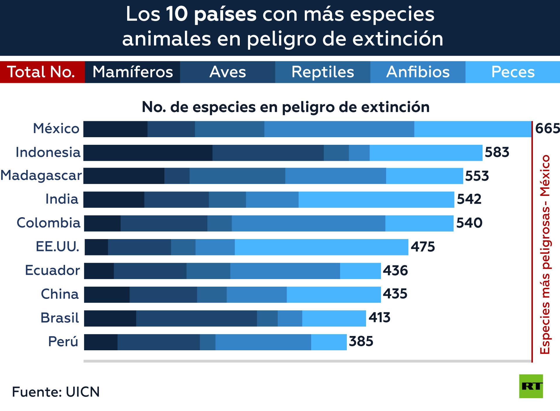 México, primer país del mundo con más especies en peligro de extinción