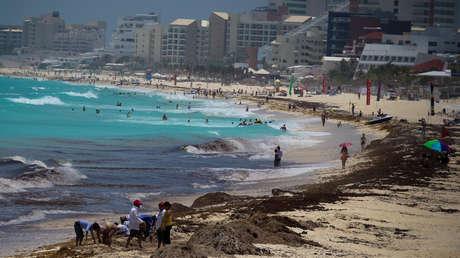 Decenas de trabajadores se dan a la tarea de limpiar diariamente el sargazo de las playas de Quintana Roo, México.