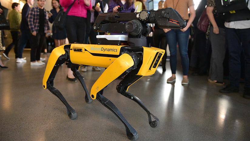 VIDEO: Un perro robot se 'desmaya' durante su presentación