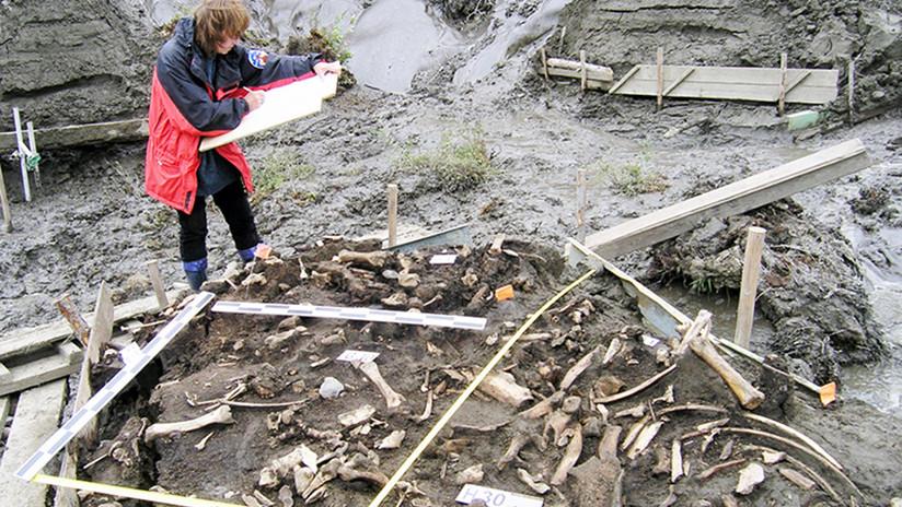 Dos dientes de leche de hace 31.000 años revelan la existencia de una antigua población humana hasta ahora desconocida