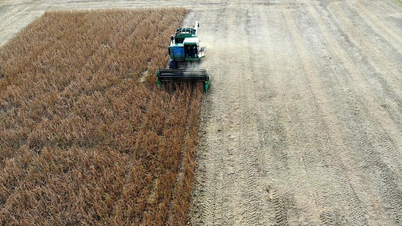 """Trump: """"México ha accedido a comprar grandes cantidades de productos agrícolas de nuestros geniales agricultores patriotas"""""""