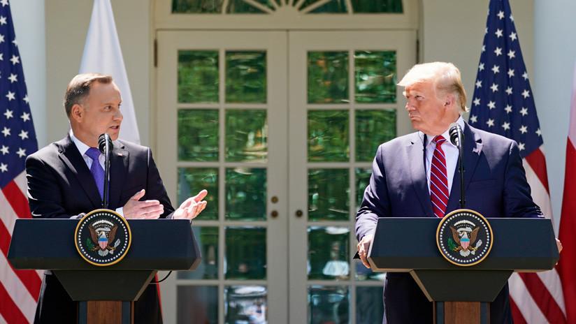 VIDEO: Captan una telaraña entre los micrófonos de Trump y Duda durante su rueda de prensa en la Casa Blanca
