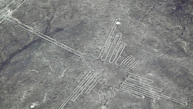 Descubren que las gigantescas aves grabadas en Nazca no son lo que se creía