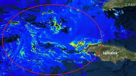 Imagen satelital sobre la mancha de sargazo en el mar Caribe.