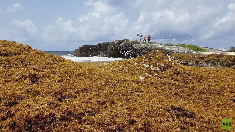 Autoridades rescatan a 25 personas secuestradas en Cancún