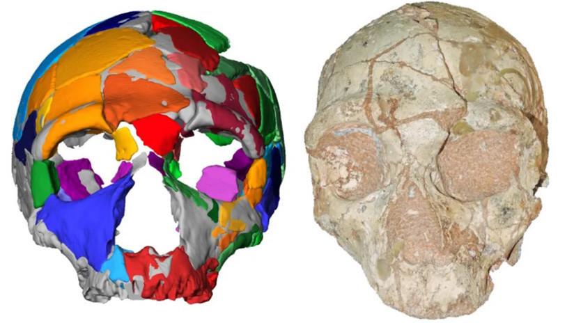 Identifican los restos de 'Homo sapiens' más antiguos fuera de África