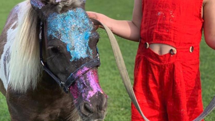Delfina Blaquier pintó un poni con glitter y fue repudiada — Maltrato animal
