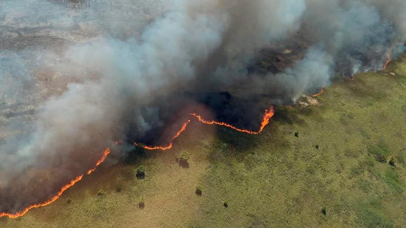 México lucha contra devastadores incendios en una reserva de biosfera en Quintana Roo