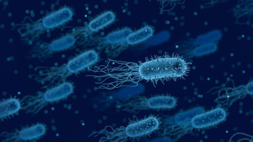 Una bacteria carnívora llega hasta el hueso y casi deja a una mujer sin un pie