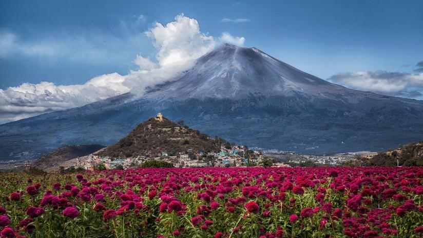 256 exhalaciones en 24 horas: el volcán Popocatépetl mantiene en vilo a México