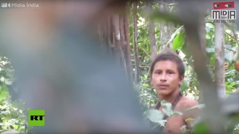 VIDEO: Graban a un indígena no contactado de Brasil en tierra cercada por los madereros ilegales