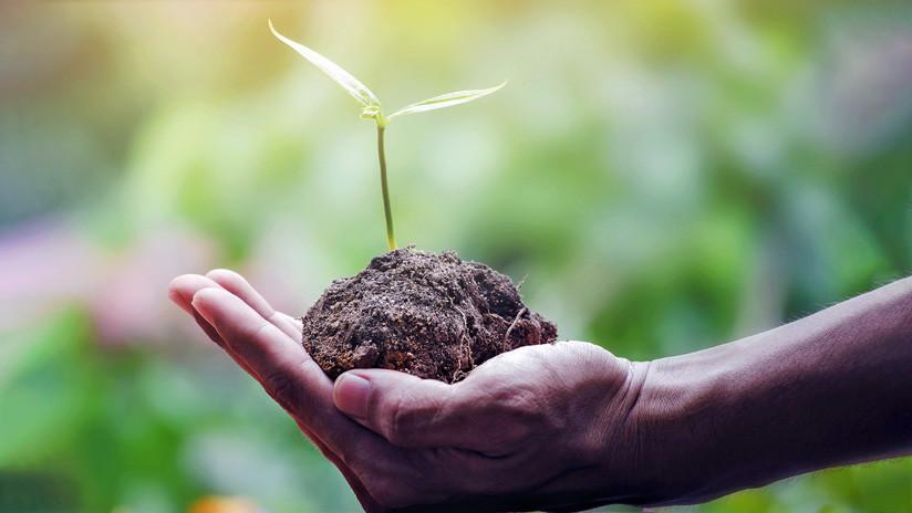 Los recursos naturales del planeta para el año 2019 ya están agotados