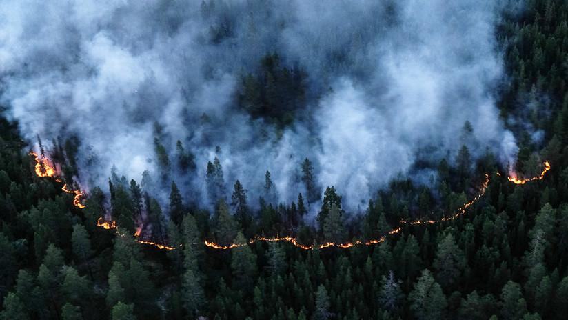 VIDEO: Declaran la emergencia en varias regiones rusas por los grandes incendios forestales en Siberia