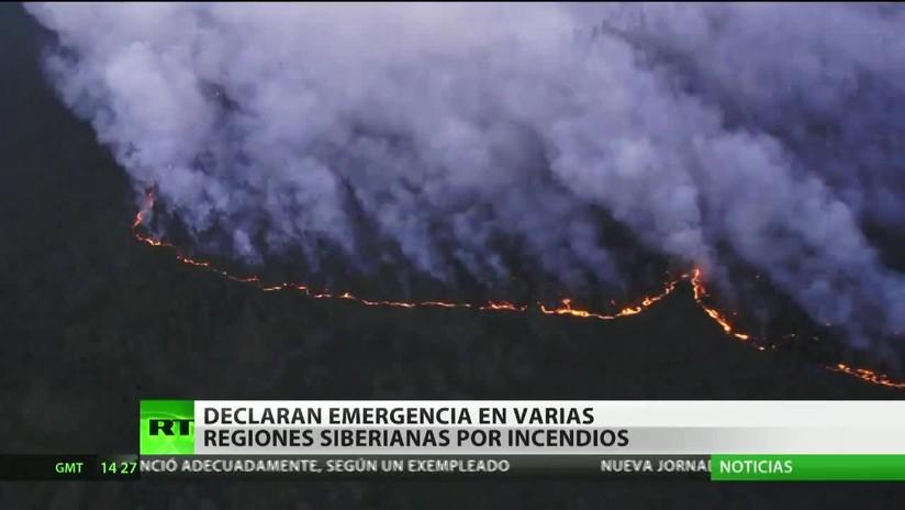 Rusia: Declaran emergencia en varias regiones de Siberia por incendios forestales