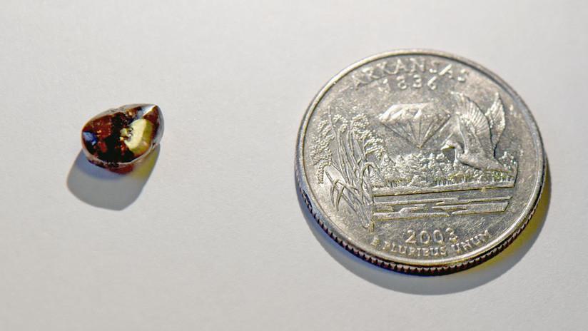 FOTO: Un maestro encuentra un diamante de 2,12 quilates en un parque de Arkansas