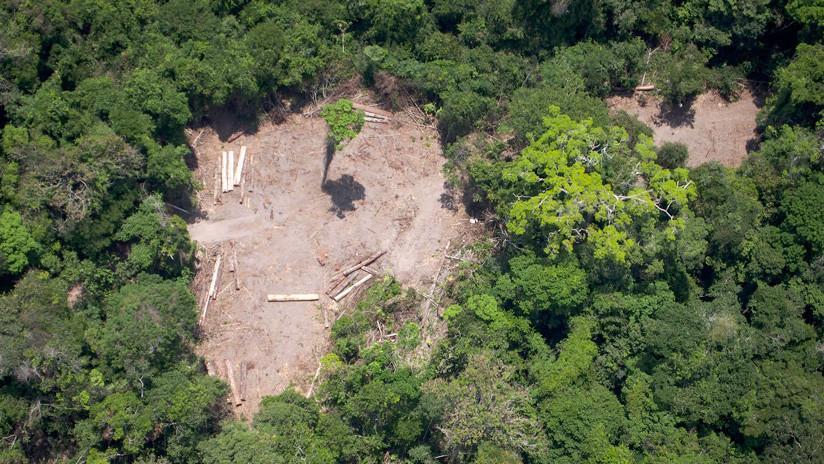 Bolsonaro dice que Brasil no necesita los recursos que Alemania dejó de destinar para la Amazonía