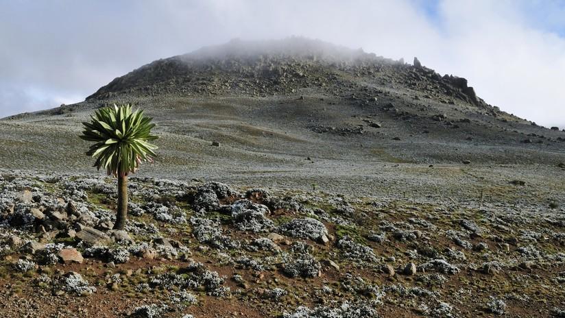 4.000 metros sobre el nivel del mar: descubren el asentamiento humano de gran altitud más antiguo conocido