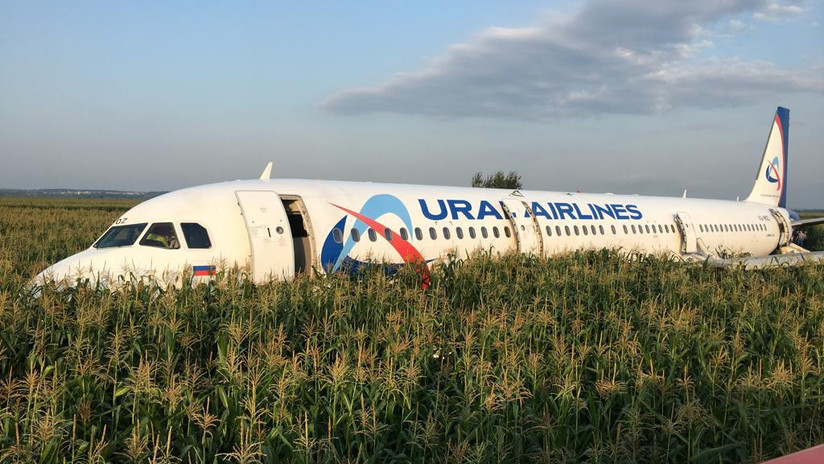 VIDEO, FOTOS: Airbus con más de 200 personas aterriza de panza y con los motores apagados en un campo de maíz cerca de Moscú sin que haya víctimas