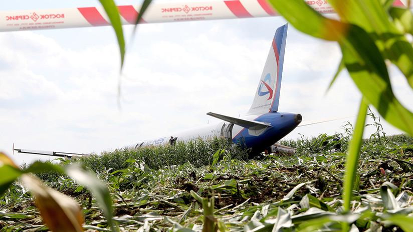 VIDEO: Momento exacto en que unos pájaros impactan con el avión ruso provocando la avería en sus motores