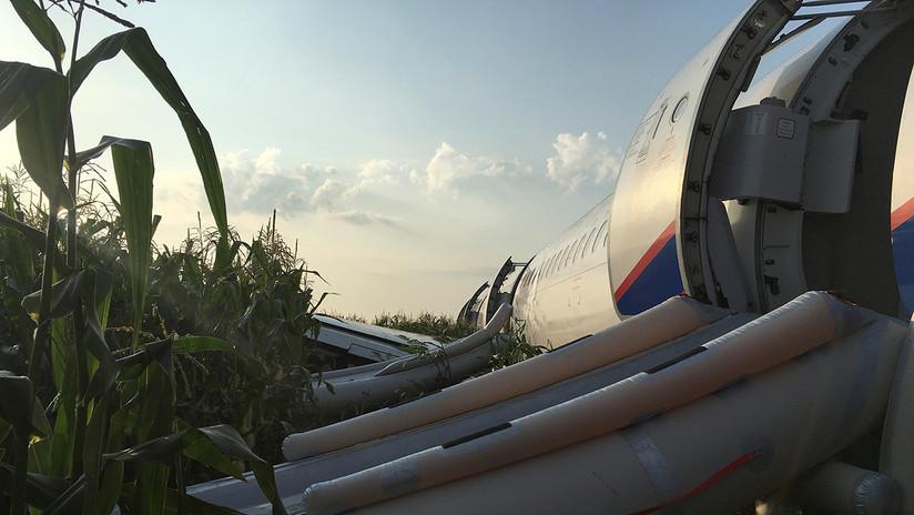 El aterrizaje de emergencia de un Airbus en un maizal cerca de Moscú, en imágenes