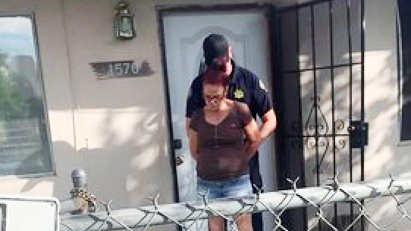 Condenan a prisión en California a una mujer que tiró a la basura a 7 cachorros de perro (VIDEO)