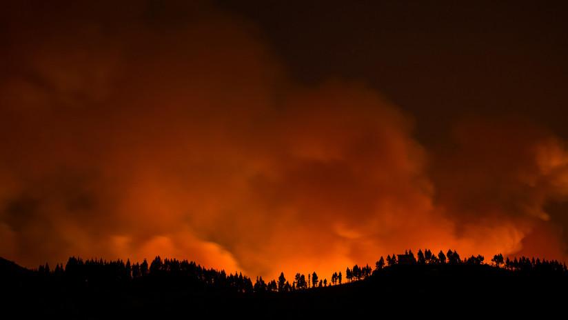 VIDEOS, FOTOS: Evacúan a más de 2.000 personas por un nuevo incendio forestal en Gran Canaria