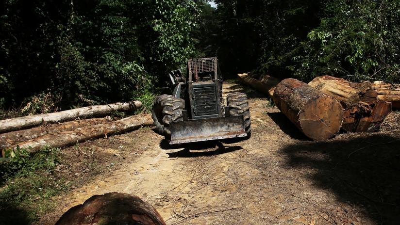 Brasil celebra la semana del Clima en un crispado ambiente por la deforestación de la Amazonía