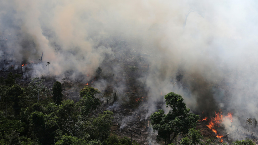 FOTOS: La NASA publica imágenes satelitales que muestran cómo arde la Amazonia en Brasil