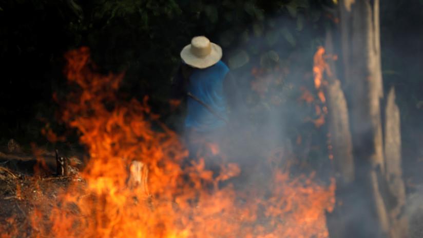 Las posibles consecuencias que pueden dejar los incendios que arrasan la Amazonía