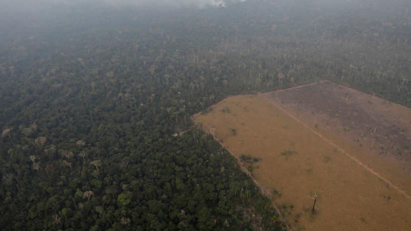 VIDEO: Las reveladoras palabras de una indígena brasileña que anticipó los graves incendios en la Amazonia