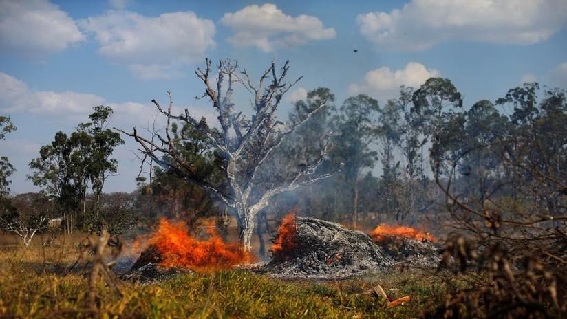 Las imágenes más perturbadoras de los incendios en la Amazonia