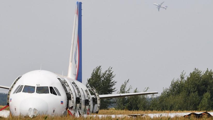 Empiezan a desmontar el avión ruso que aterrizó de emergencia en un campo de maíz cerca de Moscú (VIDEO)