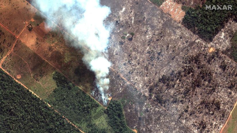 Casi 20 días después: Bolsonaro envía al Ejército para ayudar a extinguir los incendios en la Amazonia