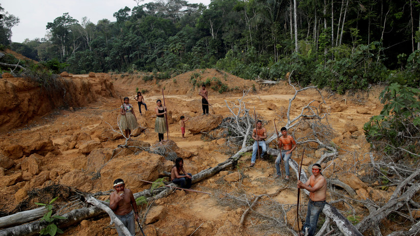 """Incendios en la Amazonia: """"Los invasores de tierras usan el fuego para dar cabida a negocios ilícitos"""""""