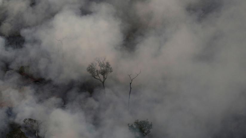 Incendios forestales en el Amazonas avanzan a una velocidad récord 5d60257108f3d971158b45d1