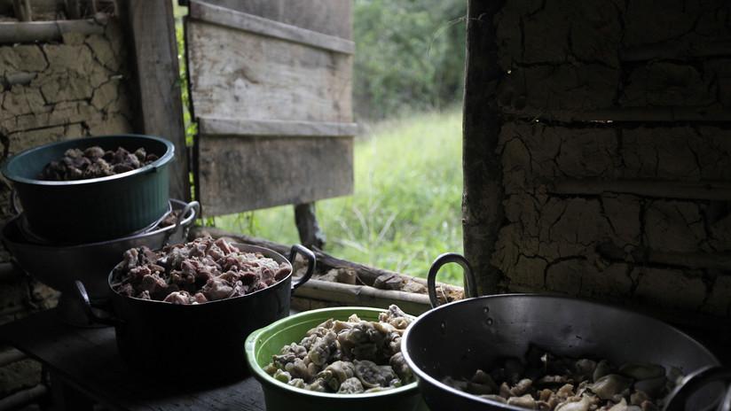 Finlandia insta a la UE a considerar un veto a la carne bovina de Brasil en respuesta a la deforestación
