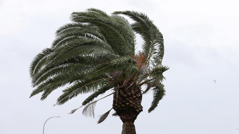 La tormenta tropical Dorian amenaza con llegar como huracán a Puerto Rico y República Dominicana
