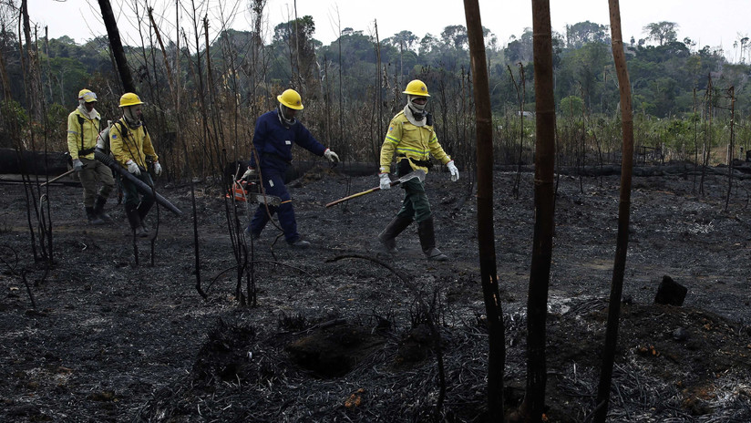 ¿Cómo se están combatiendo los incendios en la Amazonia brasileña y la Chiquitanía boliviana?