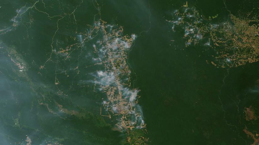 La NASA muestra en un mapa todos los incendios que azotan la Amazonia