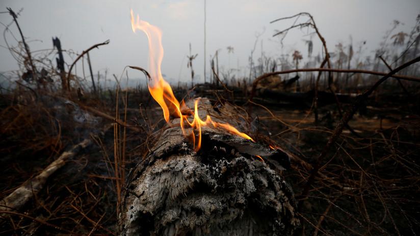 Brasil rechazará los 20 millones de dólares propuestos por el G7 para combatir los incendios en la Amazonía