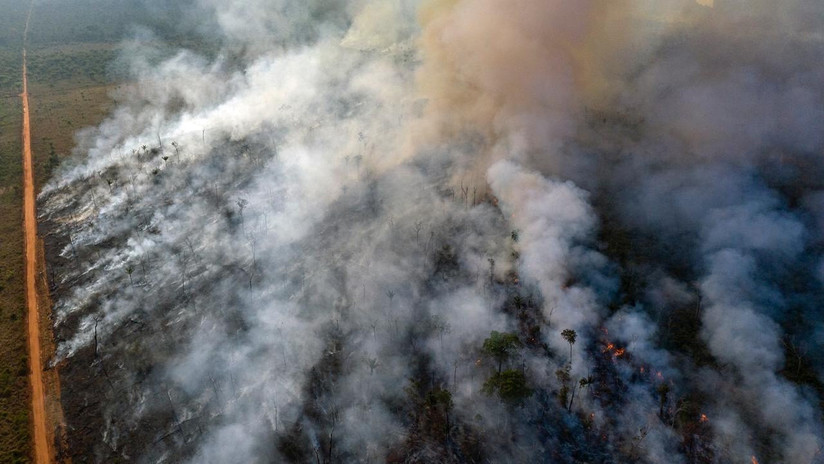 Chile envía la primera ayuda para combatir los incendios en la Amazonia: su avión Air Tractor