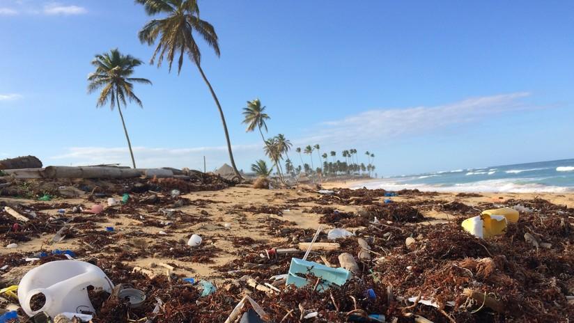 """""""El porno más sucio"""": Pornhub lucha para limpiar las playas como mejor lo sabe hacer"""