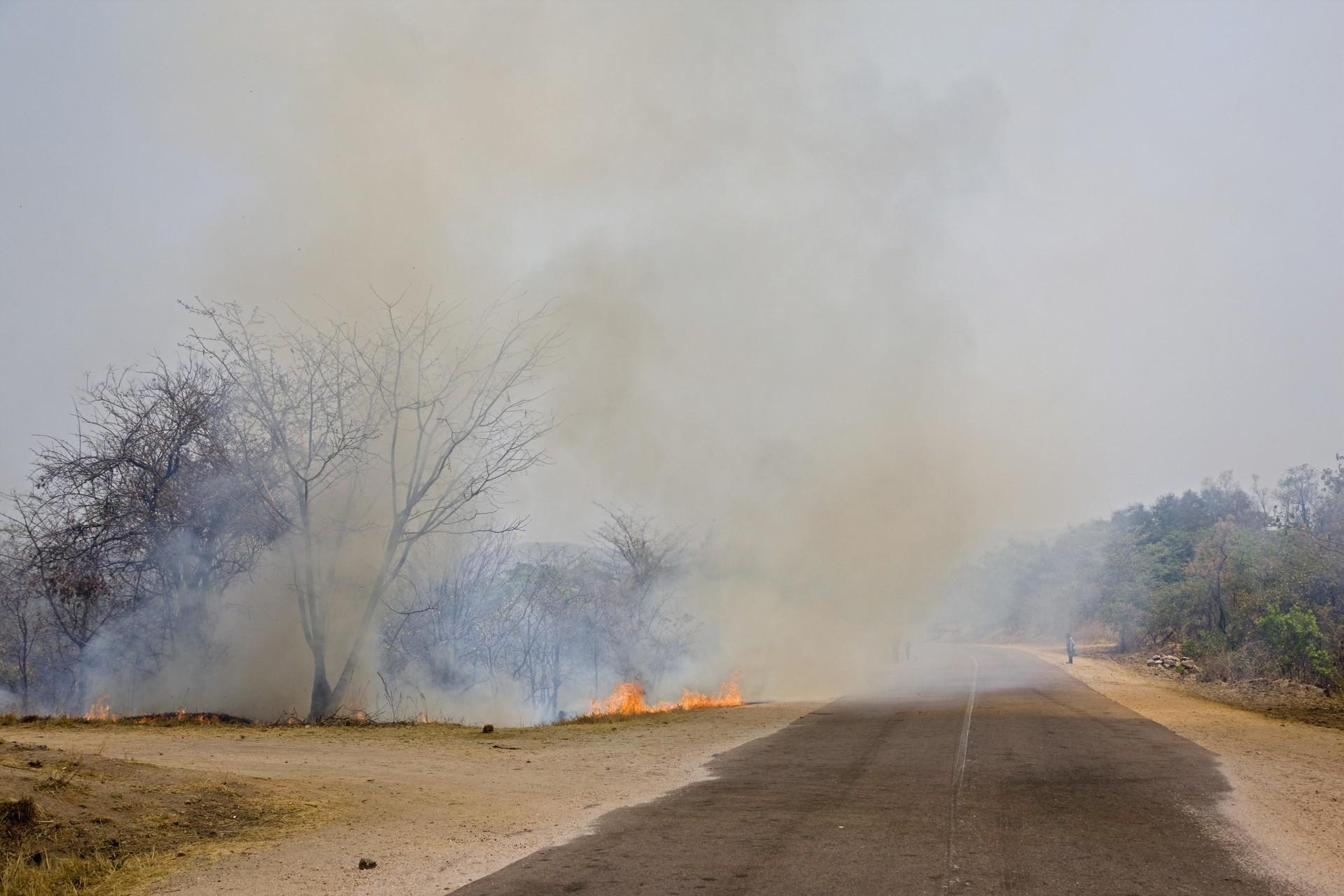 Arde otro 'pulmón verde' del planeta: hay más incendios en el África subsahariana que en la Amazonia