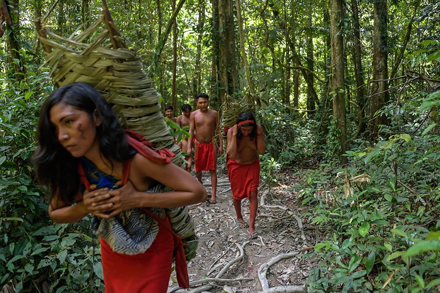 5d67d535e9180f36178b4569 - ¿Por qué se quema la Amazonia?